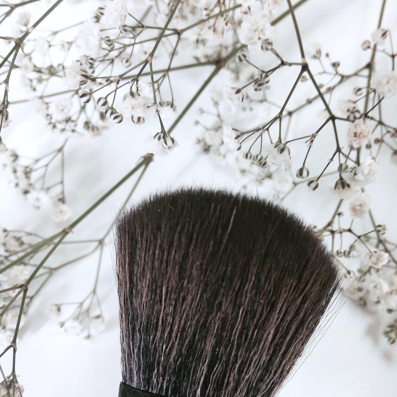 Oshinity Makeup Brushes basics